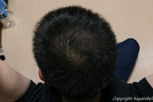 リデン体験3日目(4月19日)の写真